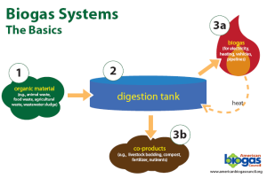 A graphic from the American Biogas Council offers a look at how anaerobic digesters work.