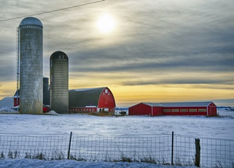 farm%20winter