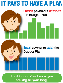 budget plan consumers energy in your community
